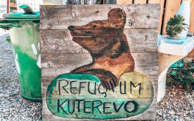 Berenopvang in Kuterevo