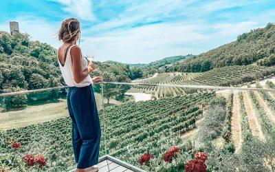 Wijnhuizen in Istrië
