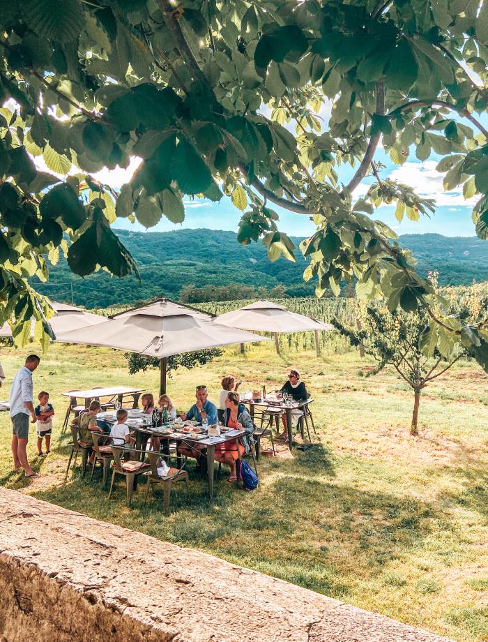 Wijnhuizen Istrie Belaj