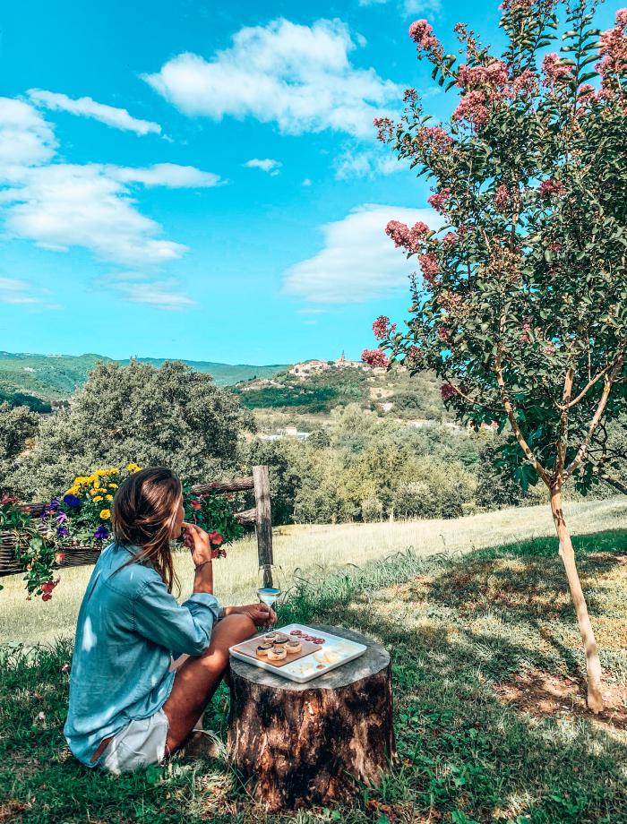 Motovun truffels Istrie Kroatie